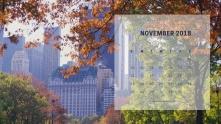 November1