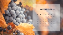 November4